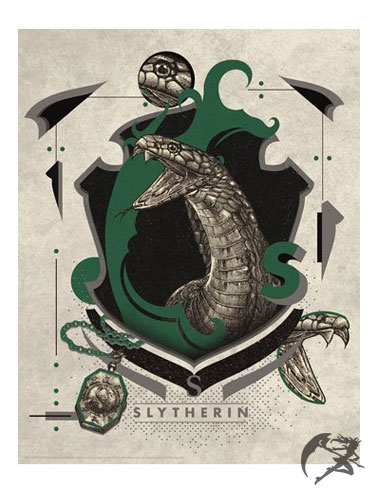Harry Potter Kunstdruck Slytherin 36 x 28 cm