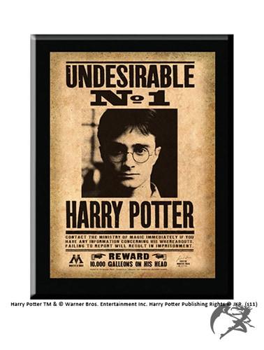 Harry Potter Wanddeko Undesirable No1