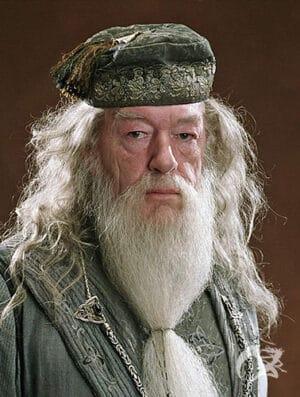 Zauberstab Albus Dumbledore Elderstab