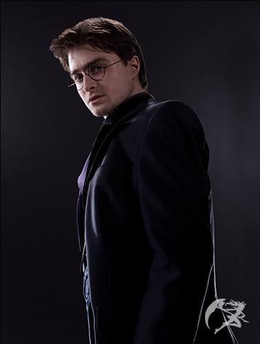 Zauberstab Harry Potter