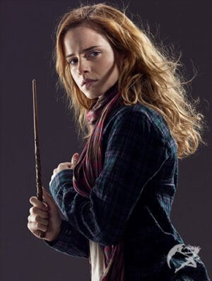 Zauberstab Hermione Granger