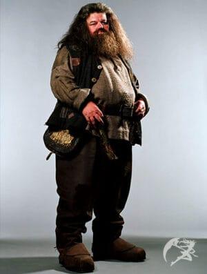 Zauberstab Rubeus Hagrid Ollivander Edition