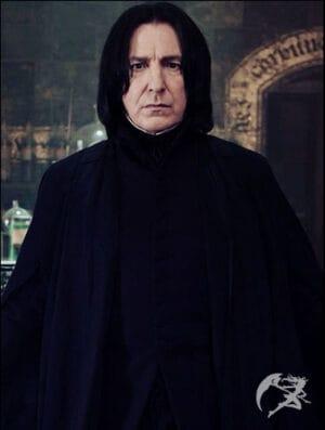 Zauberstab Severus Snape
