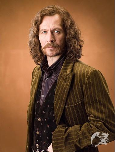 Zauberstab Sirius Black
