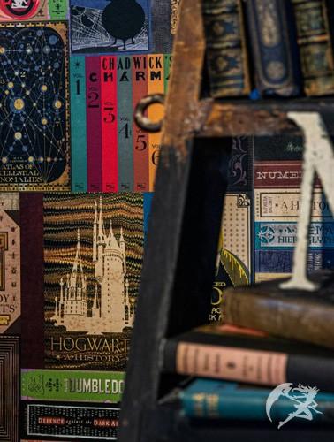 MinaLima Die Hogwartsbibliothek Tapete - Wallpaper/Mural - MinaLima